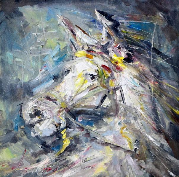 Konjska glava, 40x40, Goran Gatarić, ulje na platnu
